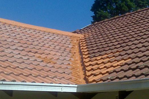 Waterproofing Wall Waterproofing Roof Waterproofing